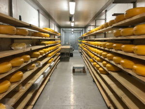 Forx cheese fridge